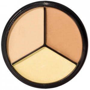 pro-palettes concealer